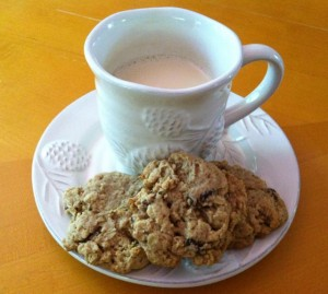 vegan oatmeal raisin cookie
